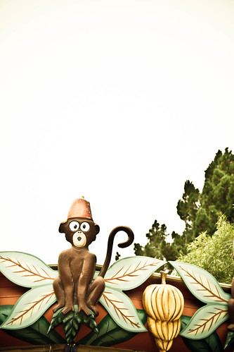 232:365, monkey