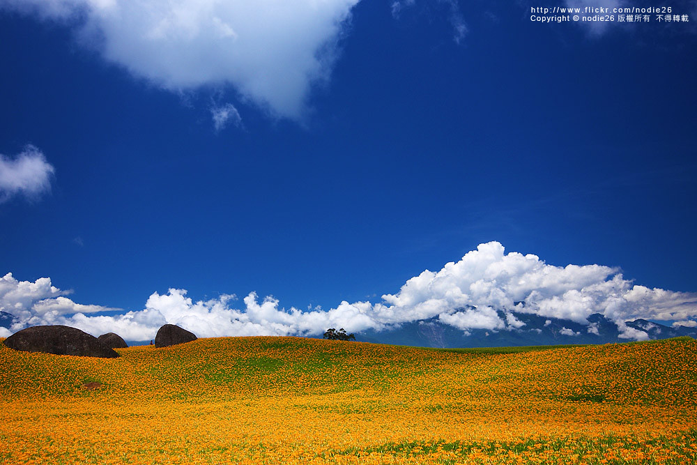 http://farm7.static.flickr.com/6083/6078994281_626da3136d_b.jpg