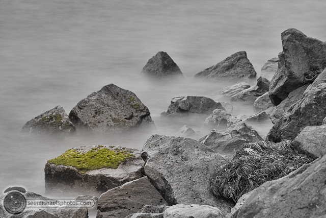 Bird Rock 82311 © Michael Klayman-005