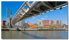 Bilbao (Pas Vasco) - Espaa (David Hdez. ) Tags: bilbao euskadi pasvasco d300 paisajesurbanos