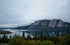 A Reflection on a Cloudy Day (hojomojo96) Tags: mountain alaska skagway bustour refleciton