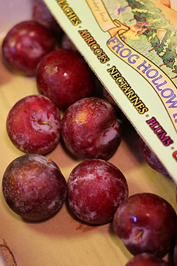 plums from Frog Hollow