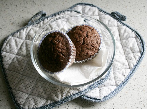 chocolate muffin delight