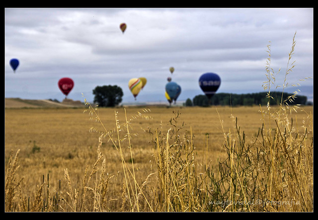 Volando sobre cereales