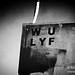 WU-Lyf-Rock-en-Seine-2011-03