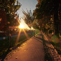 easy walk in the late summer sun (ildikoneer) Tags: road trees sunset sun castle leaves sunshine stone canon eos leaf hungary afternoon sundown path capital budapest 1020mm buda vr idream 40d colorphotoaward logodi blinkagain