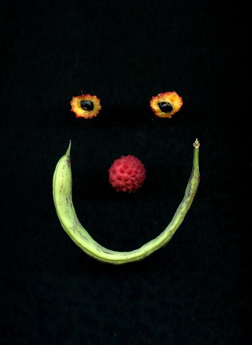 48950 smile