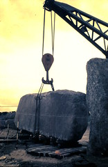 Stonehenge, Wiltshire, 25 May 1958 (allhails) Tags: stonehenge salisbury wiltshire amesbury wilts dc08