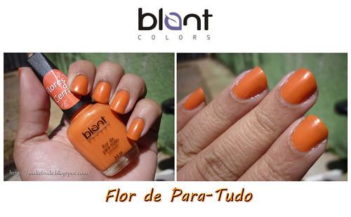 Blant - Flor de Para-Tudo