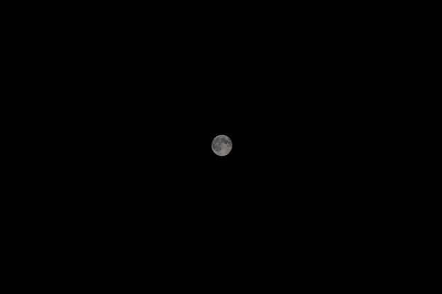 moon_6592 web