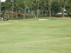 WAIKELE COUNTRY CLUB 198