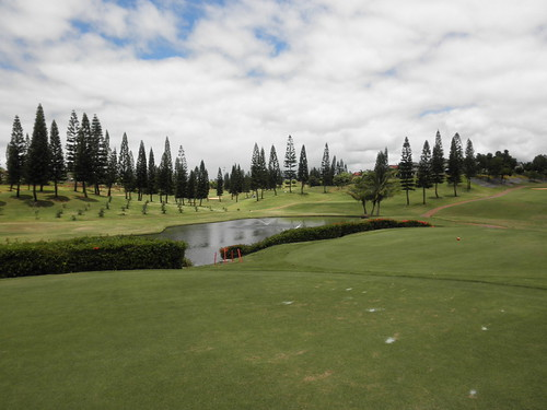 WAIKELE COUNTRY CLUB 256