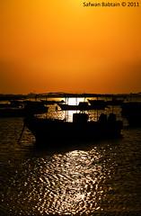 [ Silhouette] ~ (Safwan Babtain -  ) Tags: silhouette by sunrise sigma 70300mm safwan 70300  f456      babtain    ~