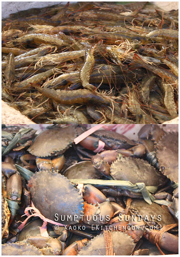 Legazpi Sunday Market: Shrimps and Crabs