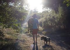 (lauralani) Tags: family tony sacramento sunflare americanriver lauradeangelis lauralani wwwlauralaniphotocom mowg