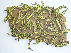 Banana skin drawings on cardboard