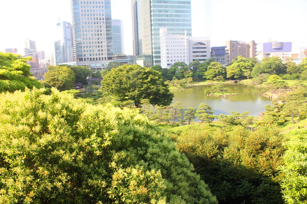 A walking guide of Hamamatsucho  (4)