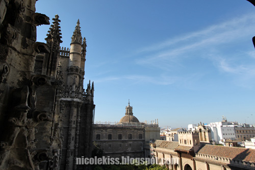 seville cathedral and city