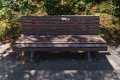 Three Brown Benches In Volkspark Hasenheide (pni) Tags: multiexposure multipleexposure tripleexposure bench brown ground leaves pni skrubu pekkanikrus ger11 threeofsomething 3of1 berlin deutschland germany