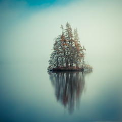 Cherry Island #2 (Comfortable Corners) Tags: morning trees mist reflection 6x6 nature water fog comfortable square landscape outdoors island dawn scotland nikon pastel naturallight calm squareformat loch magichour 2010 corners idream artlibres treesdiestandingup comfortablecorners