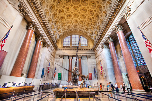 American Museum of Natural History Museum, New York