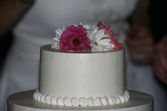 The cake (alyson_olander) Tags: wedding dave garden virginia marriage august va leesburg valerie 2011 oatlandsplantation valerieanddave
