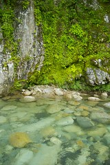 Clear inviting pool (rumpleteaser) Tags: summer green nature water pool japan river waterfall cool raw peace august clear cc creativecommons rest gifu nakatsugawa