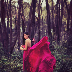 The Wanderer (Andria  Takeuchi) Tags: brazil lamp girl brasil fairytale movement woods dress forrest florianopolis soul conceptual thewanderer andriatakeuchi