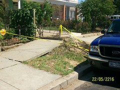 1500 Blk D St SE Sidewalk Damage (DDOTDC) Tags: washingtondc dc hurricane irene ddot downedtrees hurricaneirene dcirenedamage