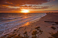 Golden Glow (Olly Plumstead) Tags: light sunset orange seascape seaweed west english beach yellow clouds canon reflections landscape sussex se golden bay coast waves glow sigma foundation filter 09 lee hour 12mm he olly 06 tones 1020 groyne selsey hitech holder plumstead gnd 450d mygearandme