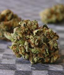 Kushage (BoQunabo) Tags: medical pot bud marijuana cannabis kushage