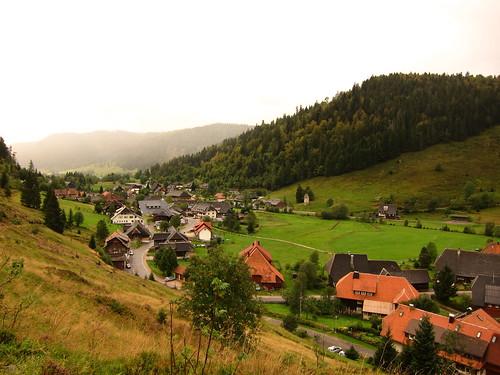 Menzenschwand Germany by Danalynn C
