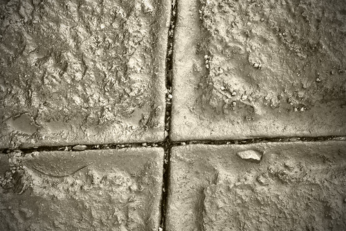 Tesselated Pavement-closeup 1