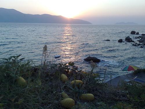 Le zucche al mare by durishti