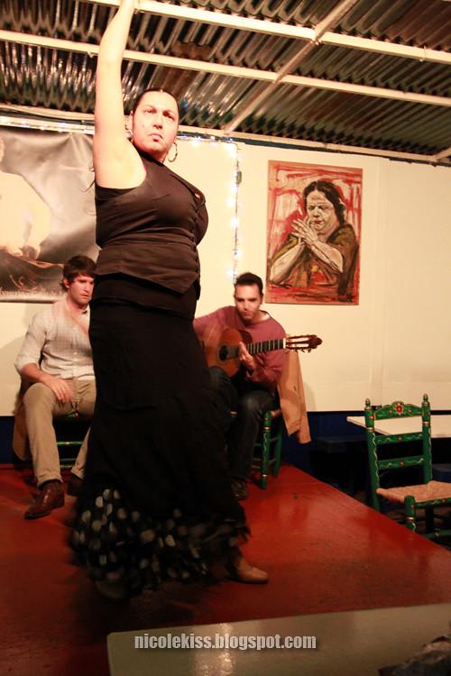 flamenco dance 2