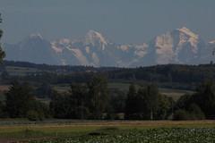 Eiger - Mönch - Jungfraujoch - Jungfrau im Kanton Bern / Wallis in der Schweiz (chrchr_75) Tags: hurni christoph schweiz suisse switzerland svizzera suissa swiss chrchr chrchr75 chrigu chriguhurni 1109 september 2011 hurni110907 albumgrossesmoos grosses moos niedermoorgebiet niedermoor moor gemüse gemüsekammer eiger bergeiger albumeiger alpen alps berg mountain chriguhurnibluemailch september2011 albumzzz201109september hurni110906 mönch kantonbern kantonwallis kantonvalais montagne albumjungfrau jungfrau viertausender montagna berner oberland albumdreigestirneigermönchjungfrau dreigestirn