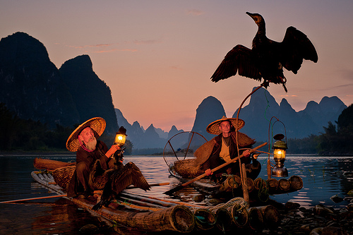 Two fishermen on bamboo rafts with a bird spreading it's wings.  Li River, Xingping, Guilin, Guangxi, China.