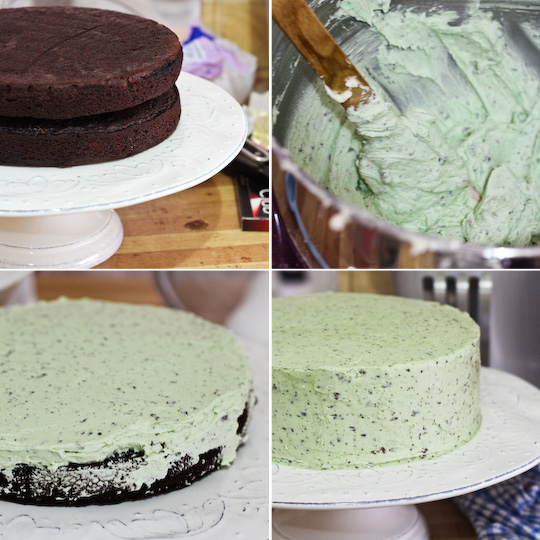 mint_choc_chip_cake-14
