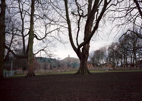 Tor across the park