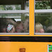 to_the_bus_20110831_19116