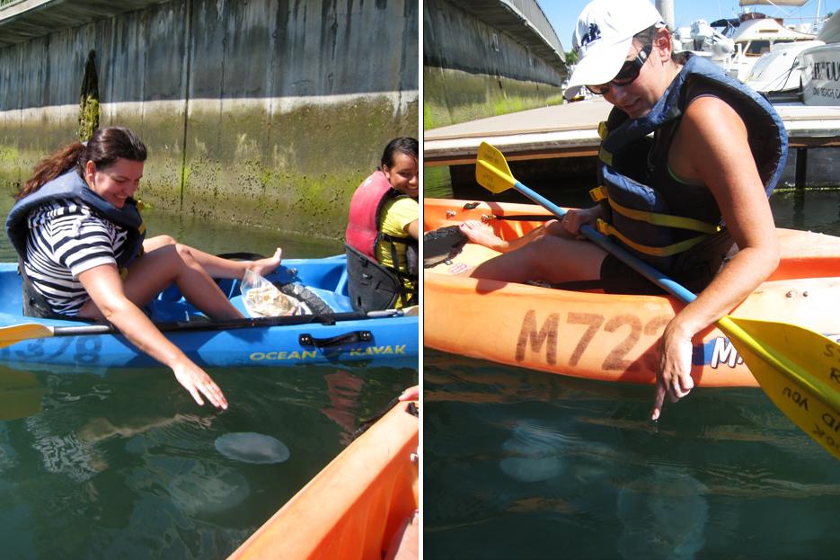 091211_kayaking04