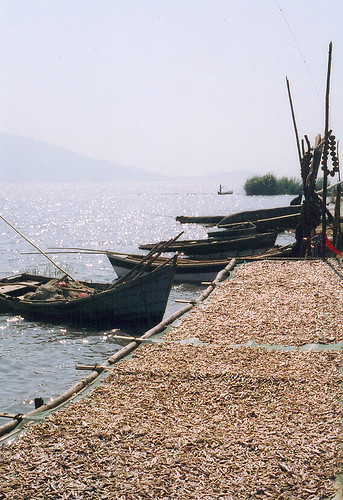 River fisheries and drying fish. Photo by Chris Bene, 2003.