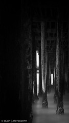 Pismo Pier (Silent G Photography) Tags: california ca longexposure portrait blackandwhite bw blur water vertical dark pier pacific le pismo pismobeach pismopier 10stopndfilter bwnd110 nikond7000 nikkor1635mmf4 markgvazdinskas silentgphotography