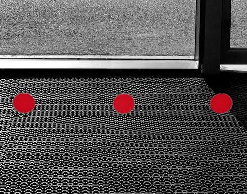 (214/365) Beware of glass doors
