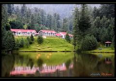 Beautiful Pakistan (>> Ali Hasan <<) Tags: pakistan lake green nature water kashmir wow1 wow2 banjosalake banjosa alihasan colorsofpakistan lakesofpakistan aleehasan hiddenbeautyofpakistan
