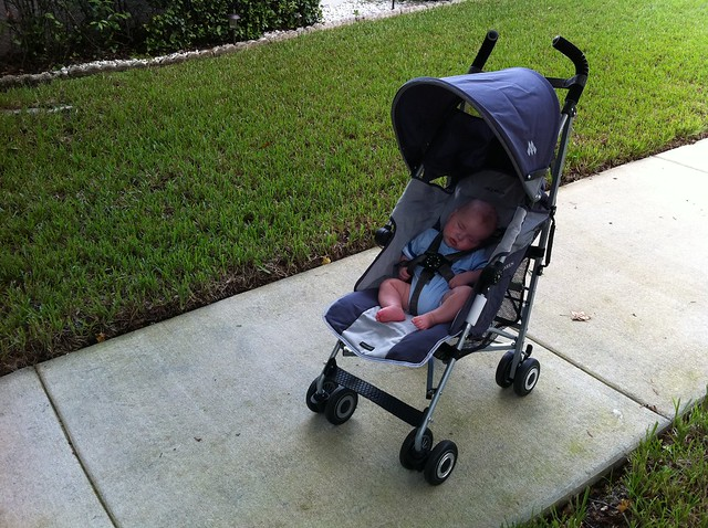 First time out in his big boy stroller.