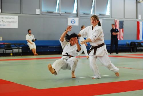 6050249521 8aa51795d2 9th International Aikido Tournament