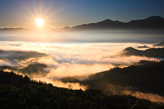 (samyaoo) Tags: light red cloud mist mountain tree green yellow fog night sunrise long exposure taiwan    sunmoonlake seaofclouds nantou