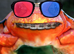 Let's all go to the movies! (Gravityx9) Tags: nerd smile photoshop glasses braces reptile teeth frog toad ribbit 3dglasses froggie haveaniceday 0811 smilingfrog redfrog psfo frogsmile 082111 frogteeth