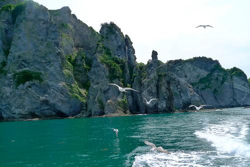 Otamoi coast
